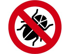Bed Bug Treatment Epsom Surrey