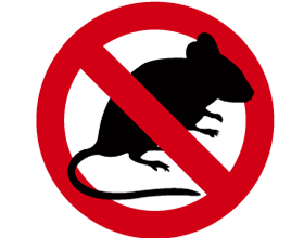 Mouse Control Epsom Surrey